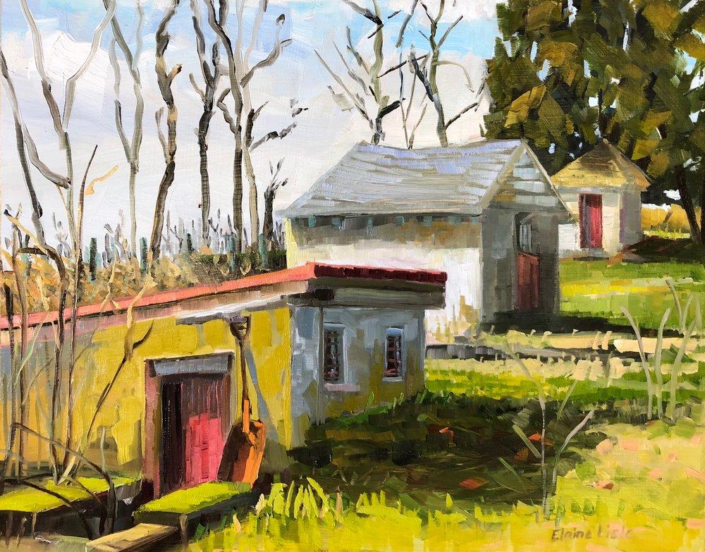 """Elaine Lisle  """"Morning Light/Outbuildings"""""""