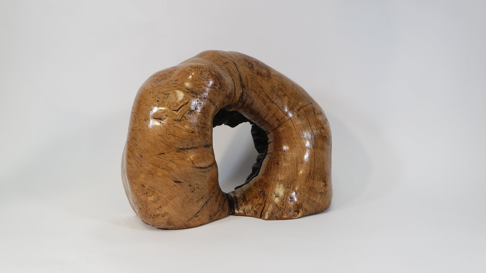 Oak Burl With encloser (12).JPG