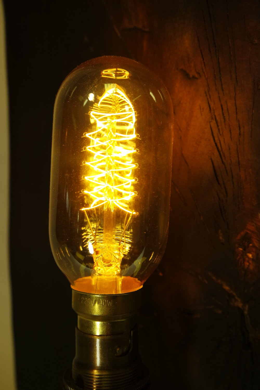 Close Up of the eddision Light bulb