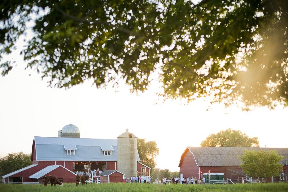 The Farm -