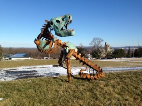 "Seaman  ""T-Rex""  5 x 14 feet, copper"