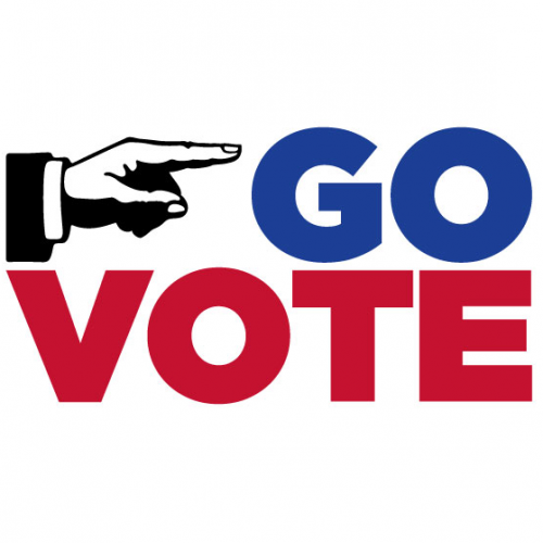 Go-Vote-500x500.png