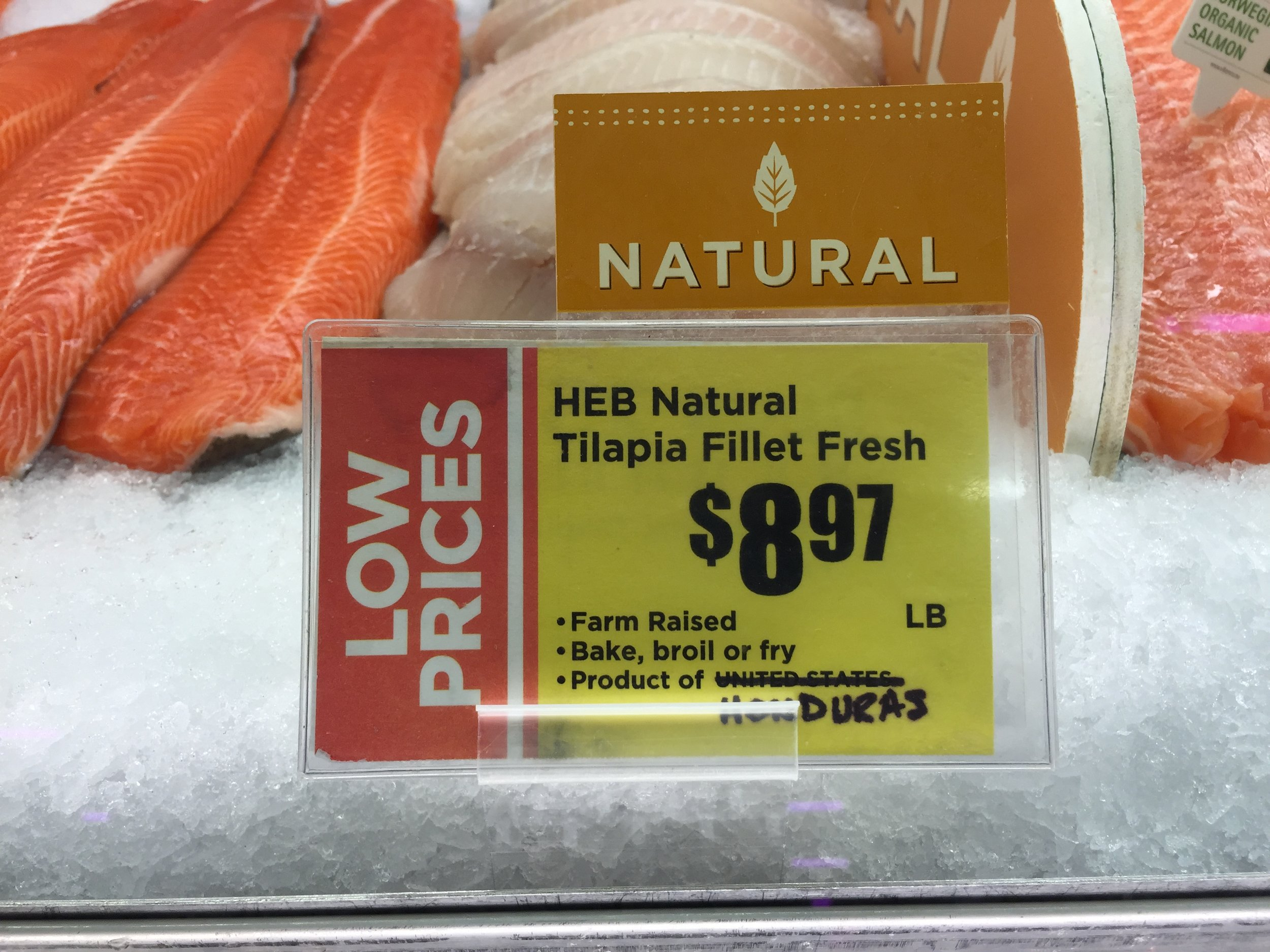 Grocery_Fish