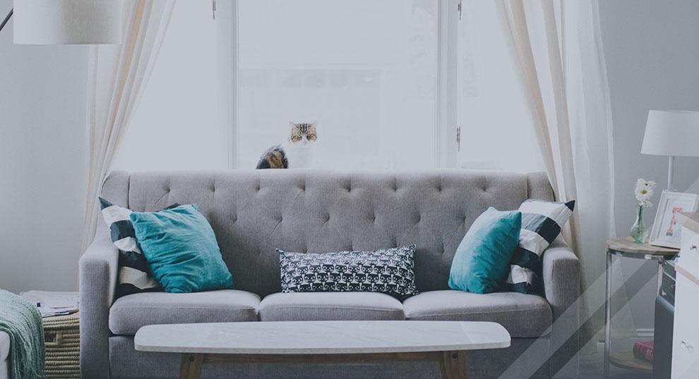傢具保養不費心 - 降低傢具擺設物品褪色、老化現象,窗戶不刮花