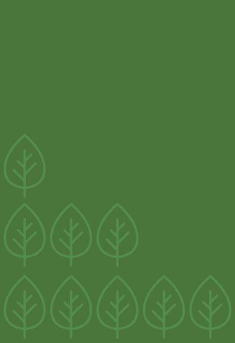 環境效益 - 種下 4,600 棵樹,減少 2,073 萬公斤碳排放