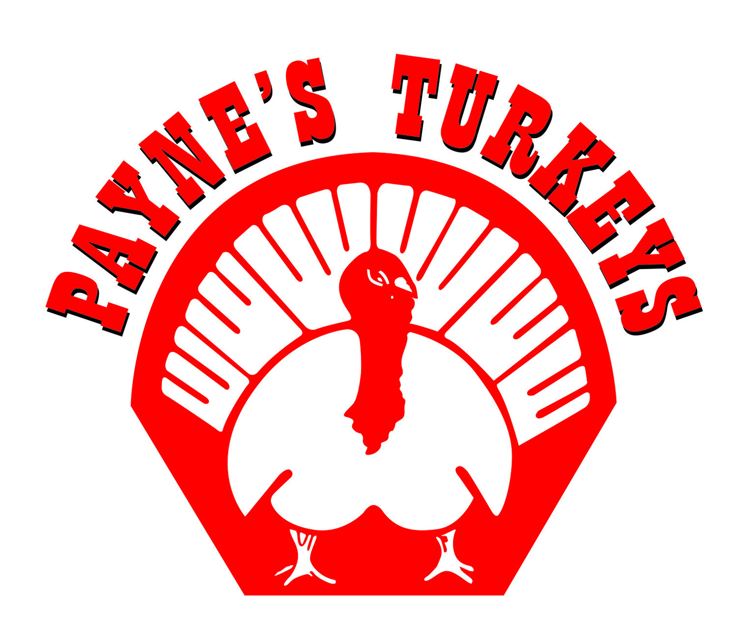 Payne's Turkeys
