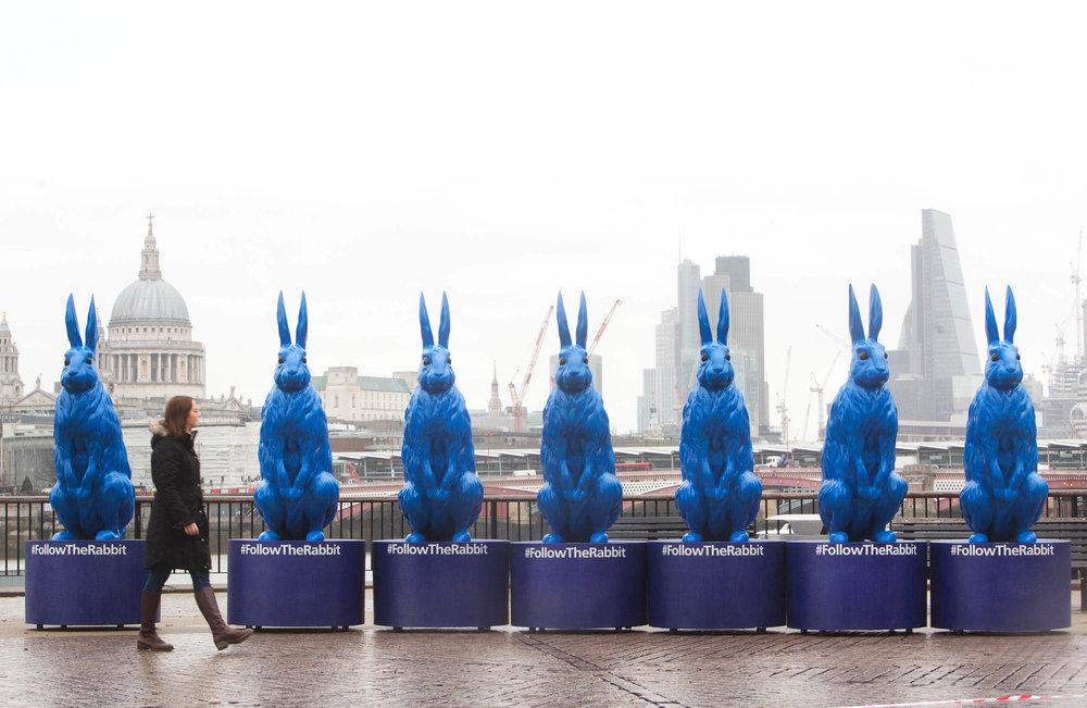 02 Rabbits VCCP
