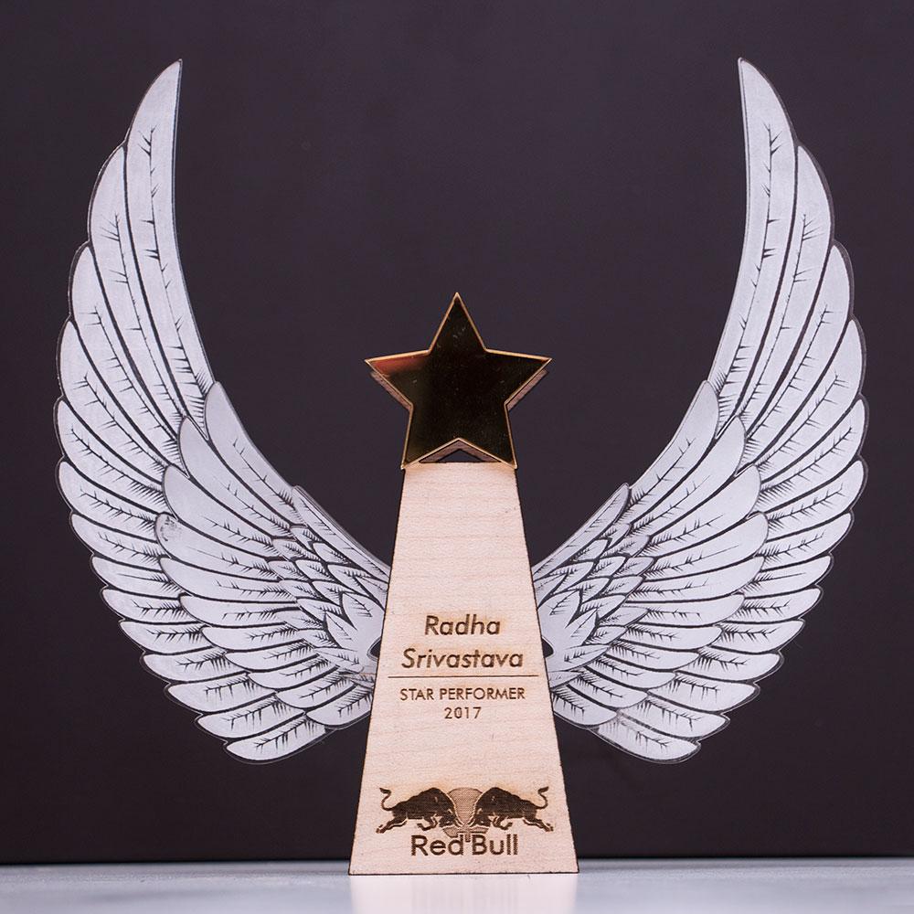 red-bull-star-performers-trophy-1.jpg