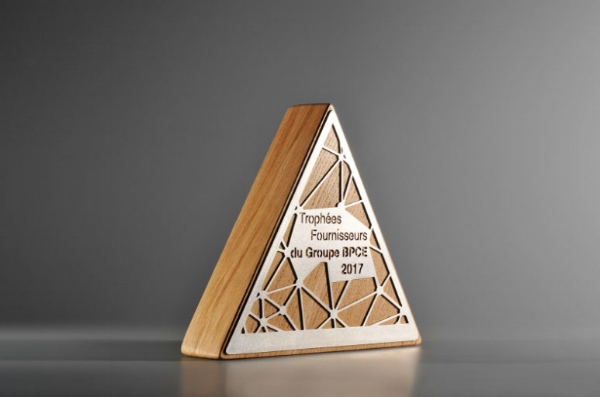 Triangle Wood and Metal Trophy.jpg