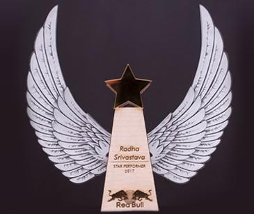 red-bull-acheivement-award.jpg