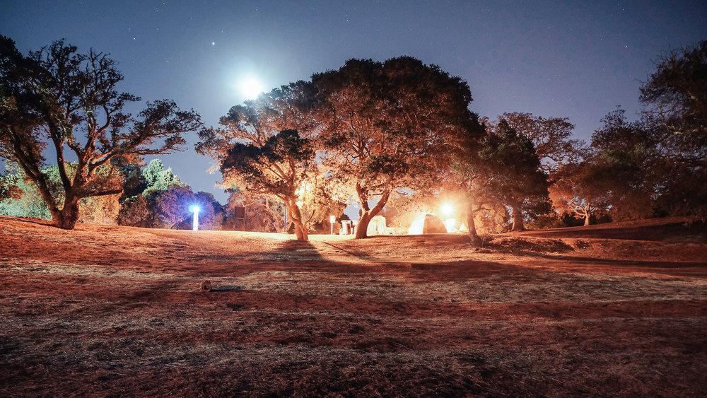夜空中斯坦福校园和我们的帐篷