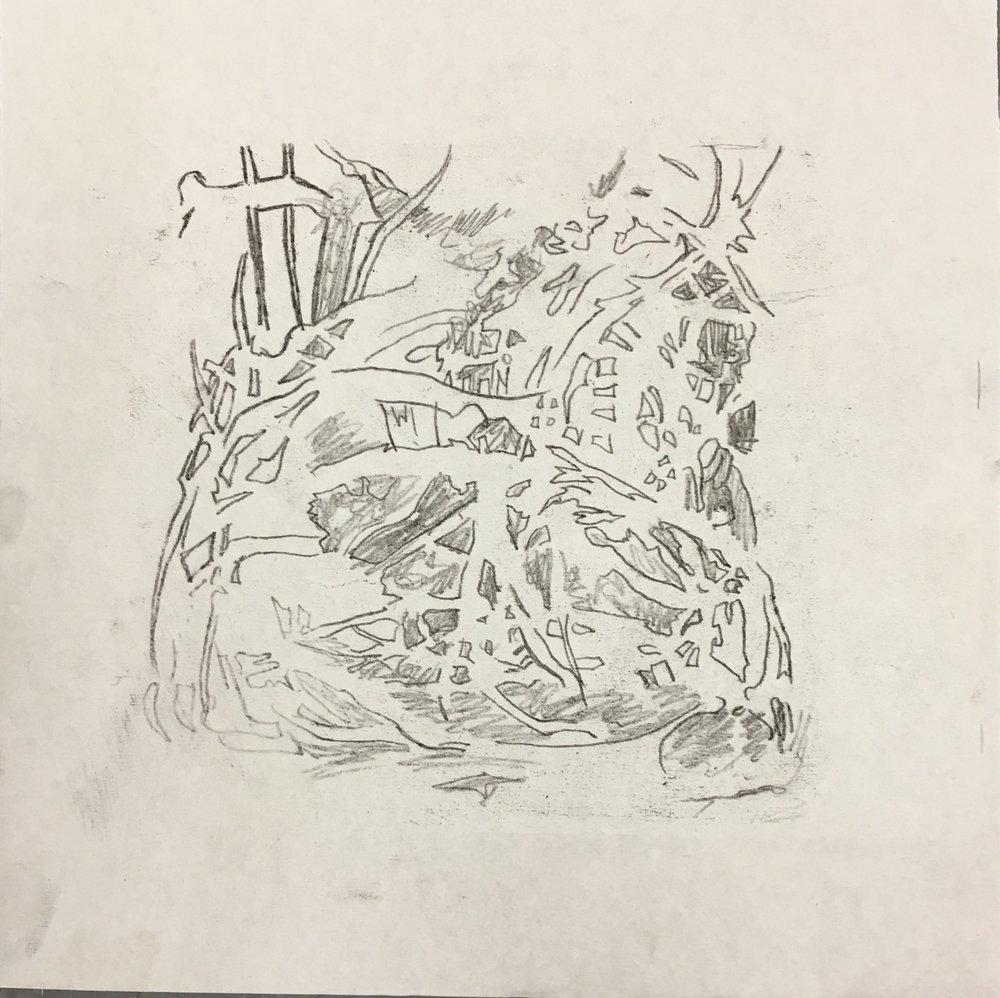 Ailanthus Root 2.jpg