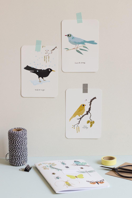 Carnet et cartes postales Natures