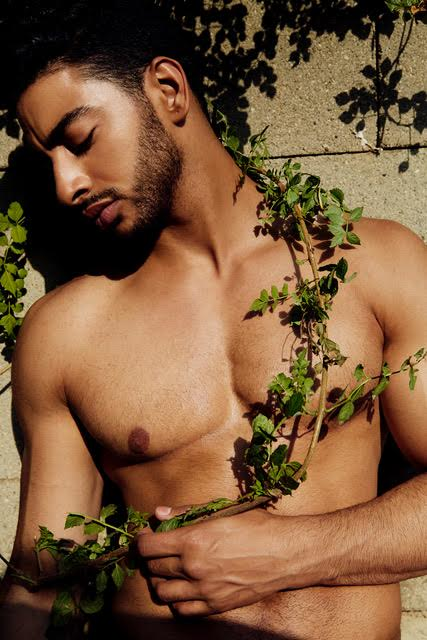 laith tom of finland house.jpg