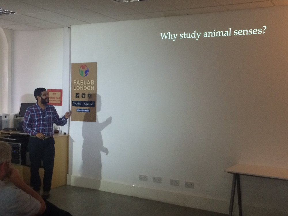 Copy of Dr Vivek Nityananda introducing the topic of animal senses