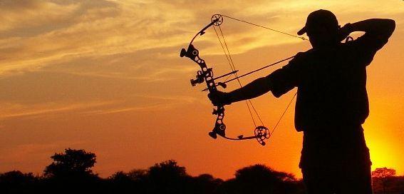 Bow Hunting.jpg