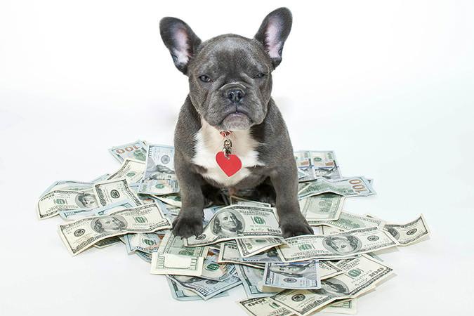 bigstock-My-Money-65250304.jpg