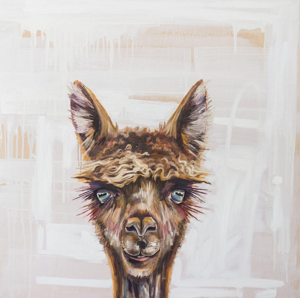 Lady Llama