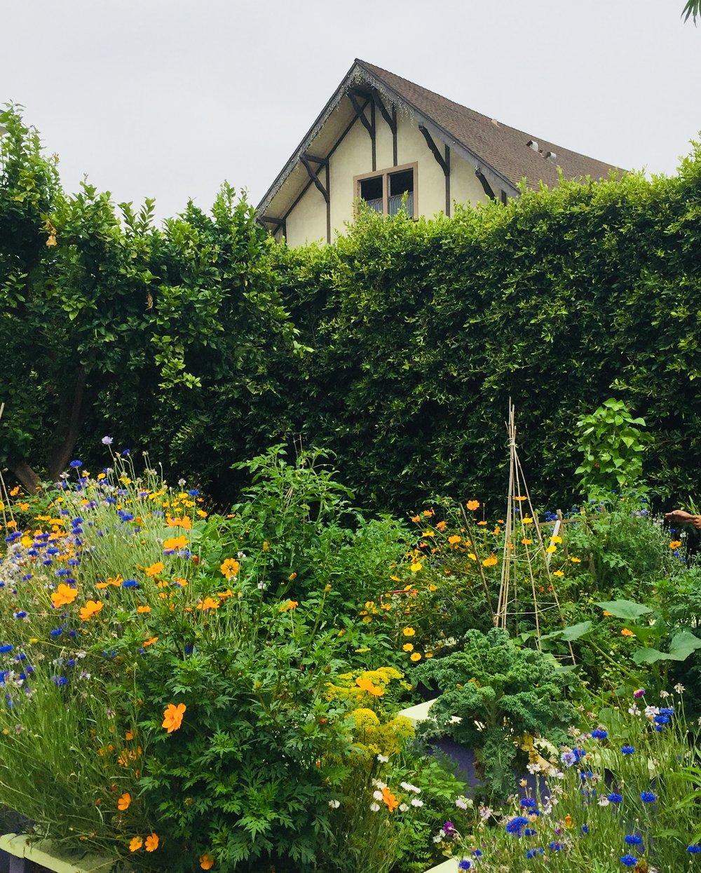 permaculture-gardening-los-angeles.jpg