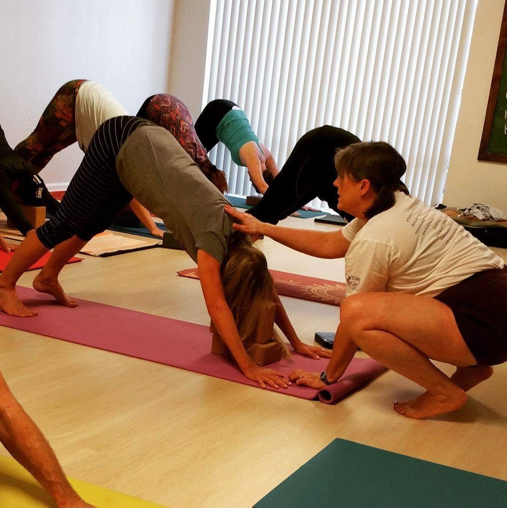 The beginner yoga course is systematic, safe and instructional.
