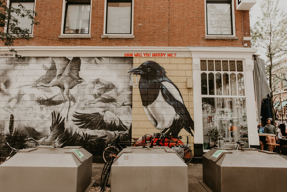 """Rotterdam street art of a magpie holding a ring in its beak with """"will you marry me sam?"""" written above. On witte de withstraat."""