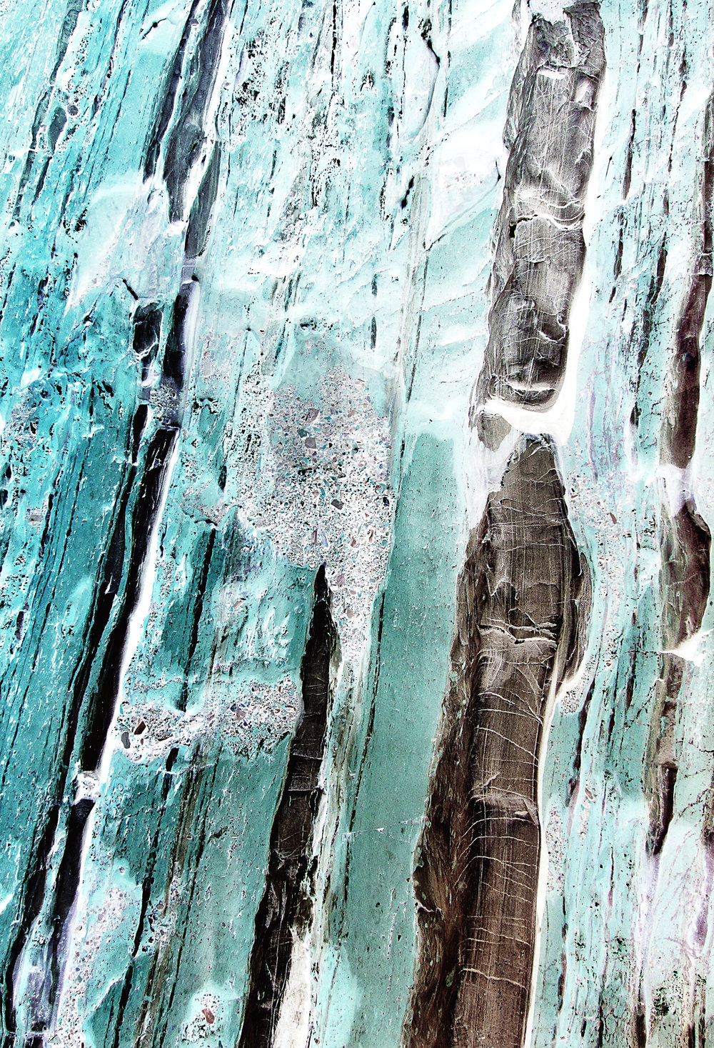 petrified_wood_by_karen_boissoneault-gauthier.jpg