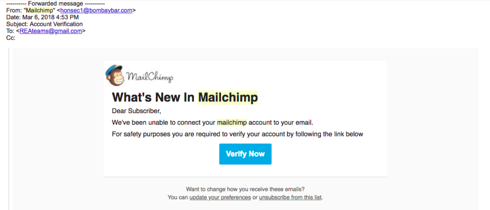 False MailChimp Email