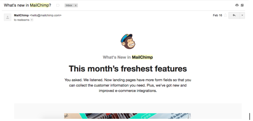 Actual MailChimp Email