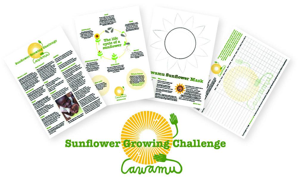 SunflowerPackShot1.jpg