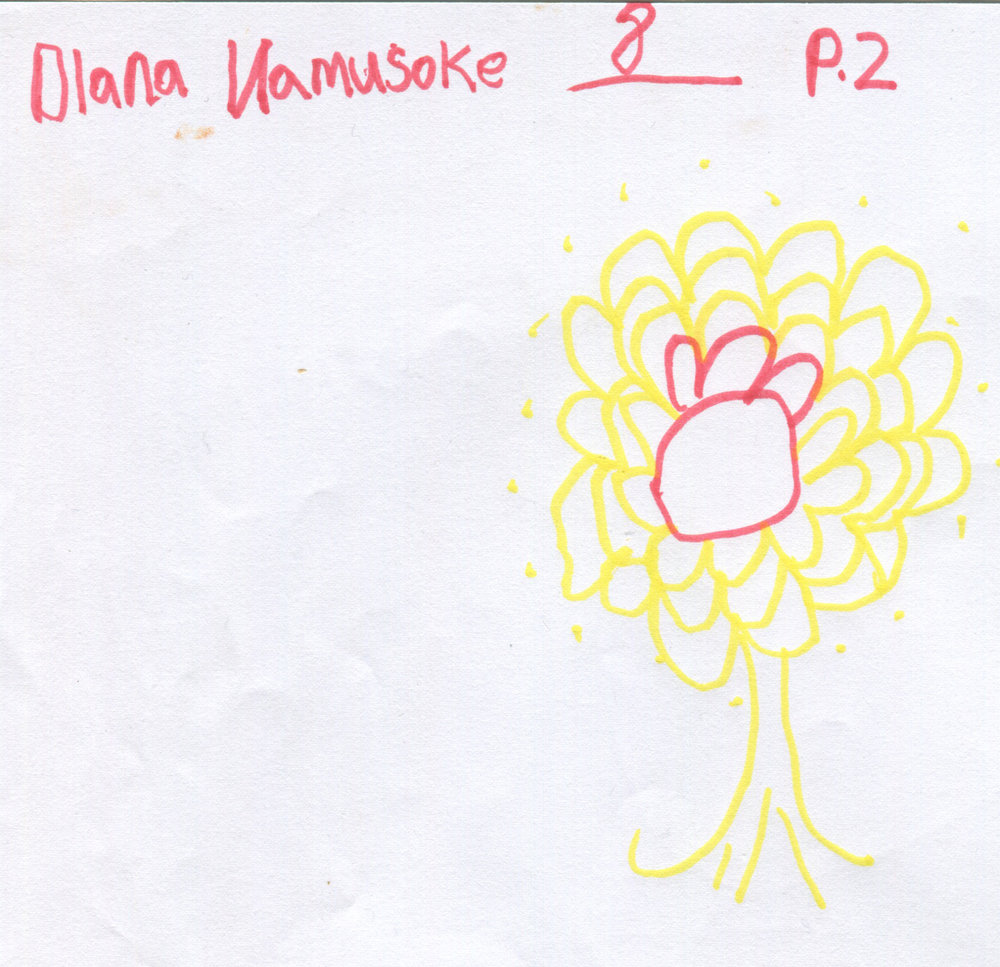 dianna flowers
