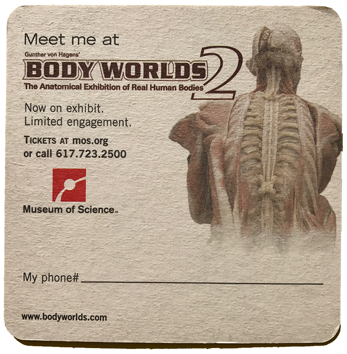 body worlds copy.png