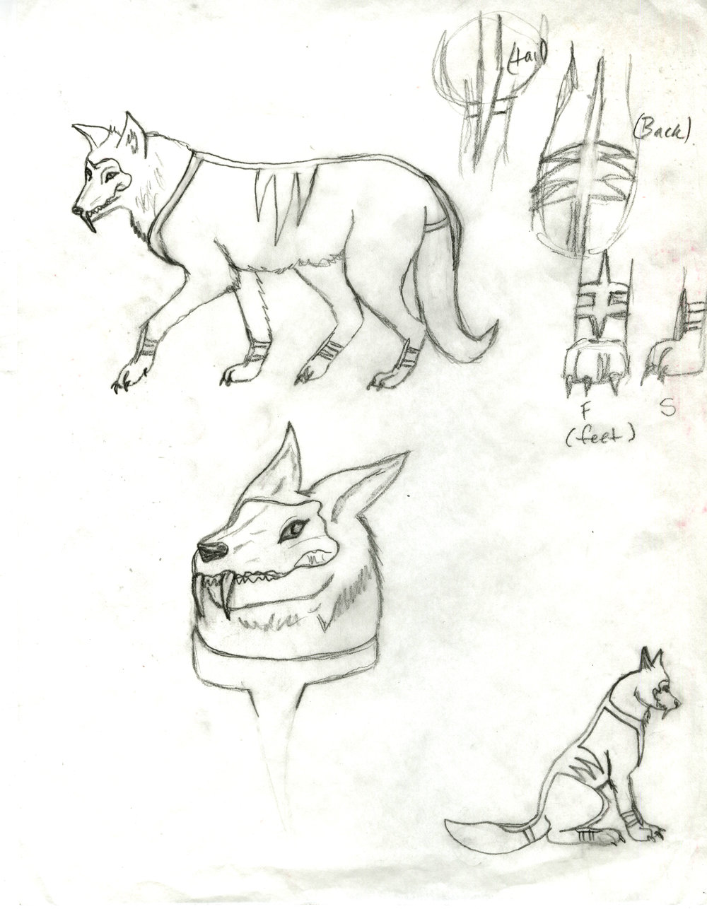 Chantal-Benitez-Frank-Case-Study-Sketches