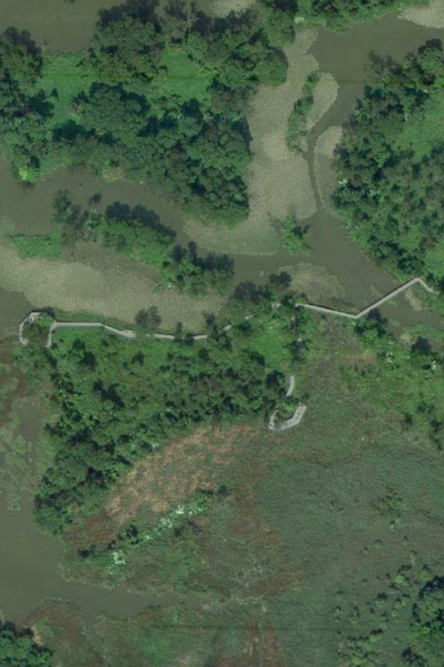 Aquatic Gardens_Aerial View.PNG