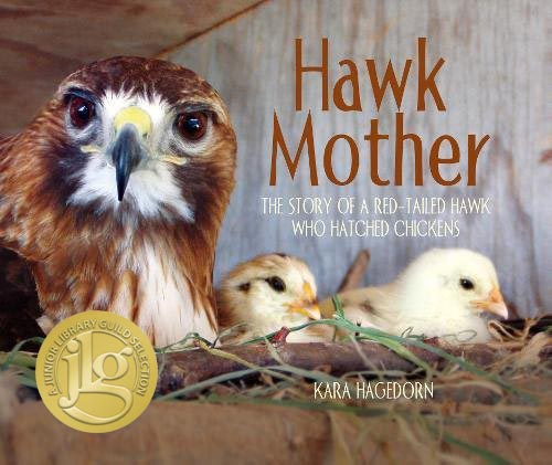 Hawk_Mother_Cover.jpg