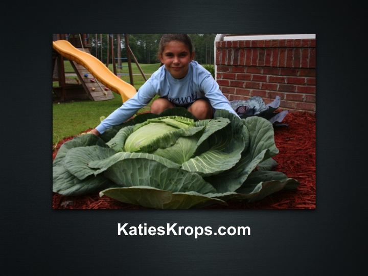 4c23e9d95d7a3 Katie Stagliano was nine years old when she brought a cabbage seedling home  from a third grade extracurricular program. At the time, Katie recalls, ...