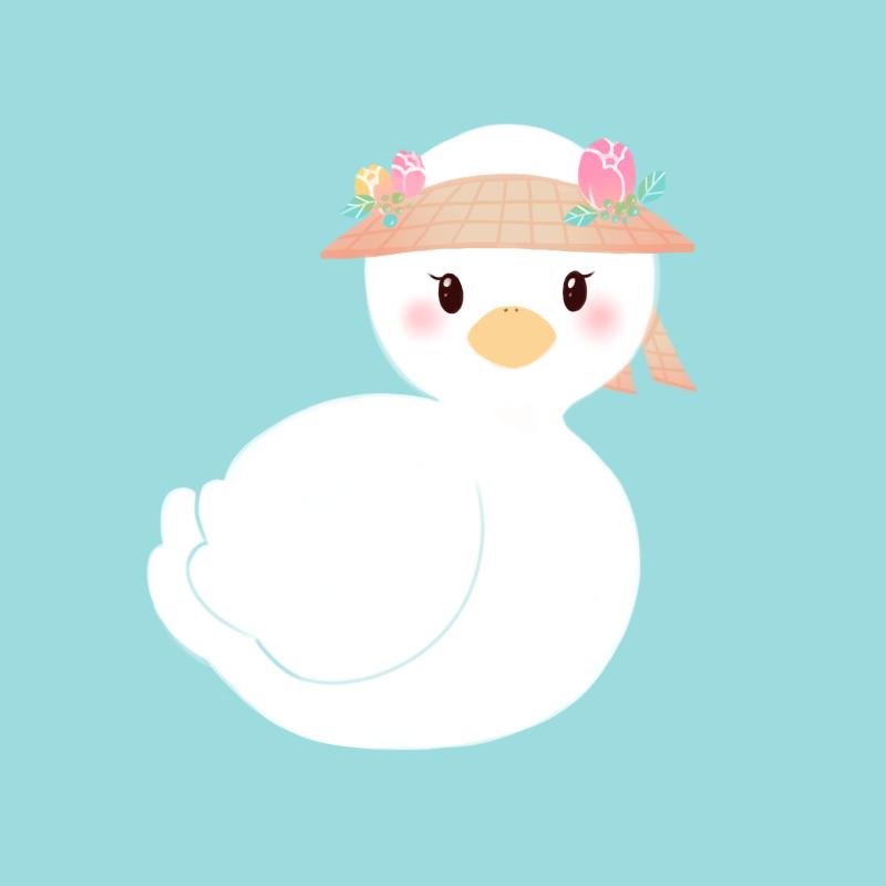 summer ducky.png