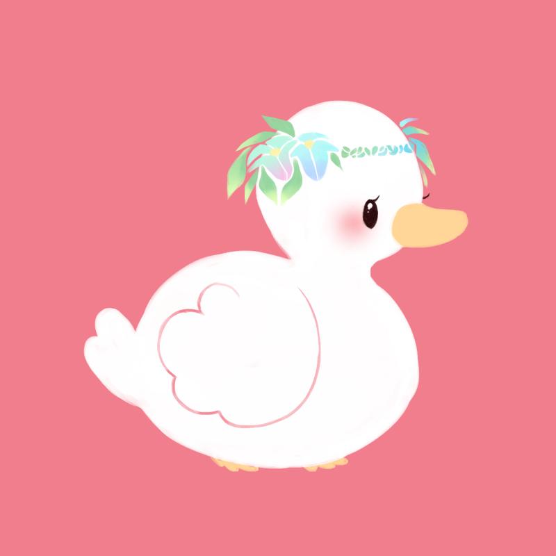 hawaii ducky.png