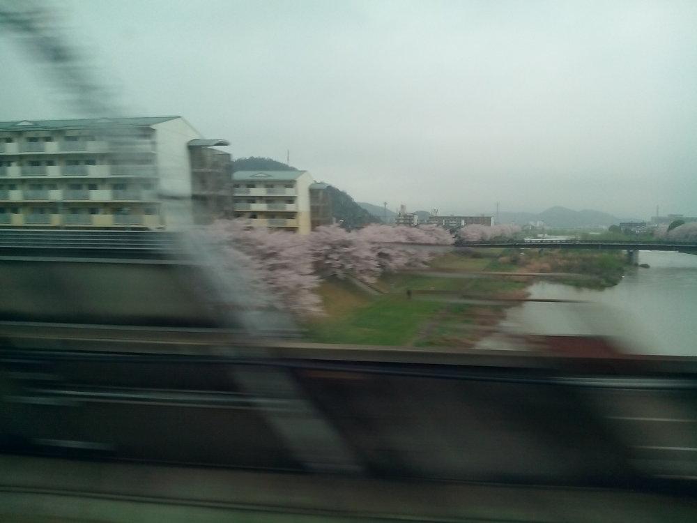 Viaje_en_Shinkanse_01.jpg