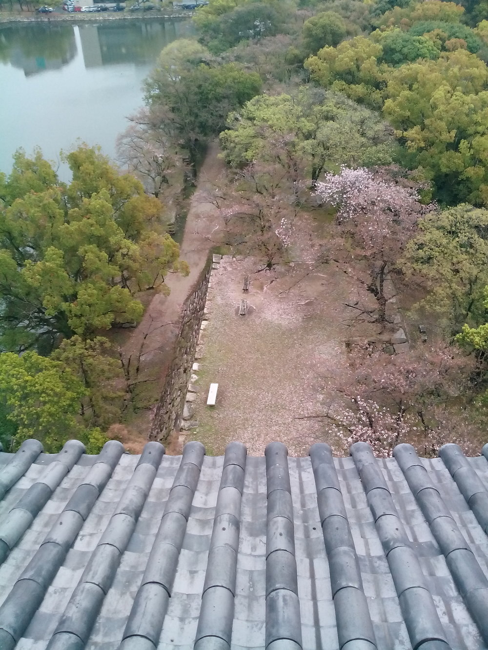 Hiroshima_Castle_04.jpg