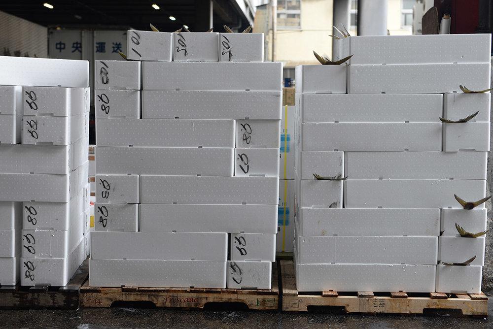 Mercado Tsukiji_03.JPG