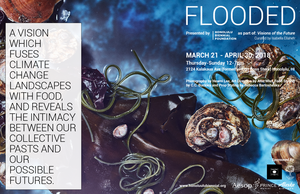 Flooded  (2016). Photography by Heami Lee, art direction by Allie Wist, food styling by C.C. Buckley, prop styling by Rebecca Bartoshesky