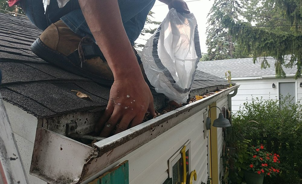 Gutter + Downspout Cleanings - Cleanings include:* Removing debris from all gutters and downspouts.* FREE system inspection for any repairs.* FREE onsite clean up after service.
