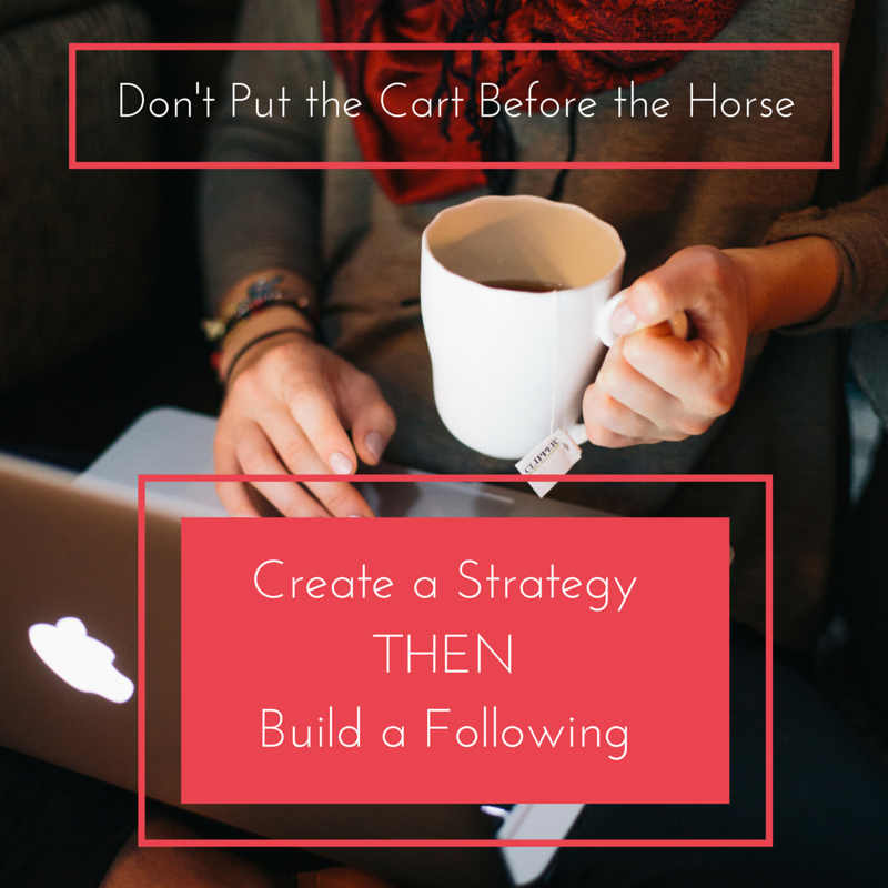 Focus on creating a solid strategy first, then build your following. Likes and Follows do not equate sales.