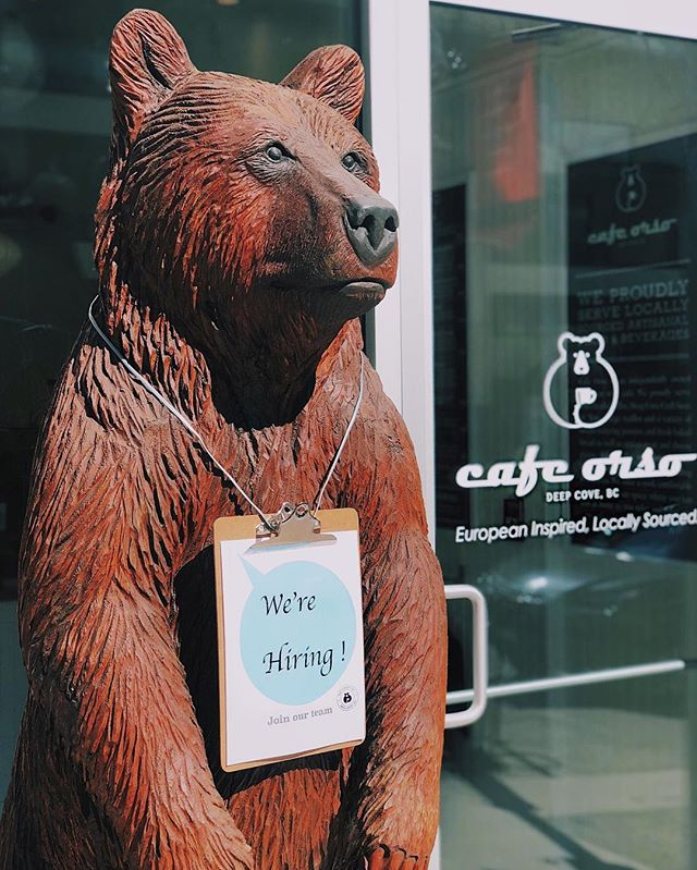Interested in gaining a job in the best cafe around? Well we are hiring, join the Orso Team! To apply, please send your resume and cover letter to woorirang@gmail.com #cafeorso #cafeorsodeepcove #deepcove #northvancouver #northvan #cafevancouver #coffee #coffeevancouver