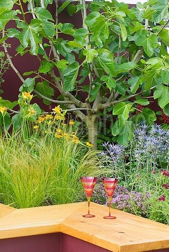 hampton-court-flower-show-2004-summer-cocktail-des-garden-vision-contemporary-small-garden-with-colourful-walls-intense-modern-planting-low-wooden-s.jpg