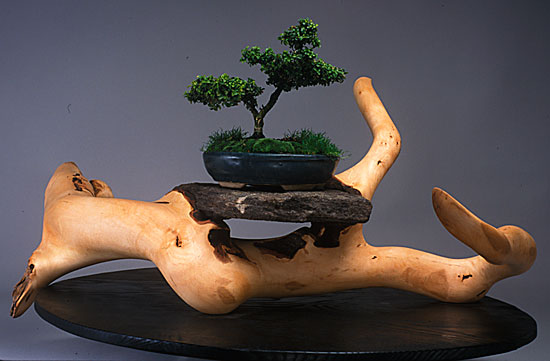 D-Holzapfel-Heaven-and-Earth-Bonsai-Table-16-31-25-maple-root-wembedded-rock-and-scorched-oak.jpg