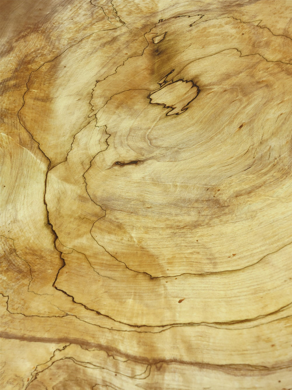 Spalted birch burl table, detail