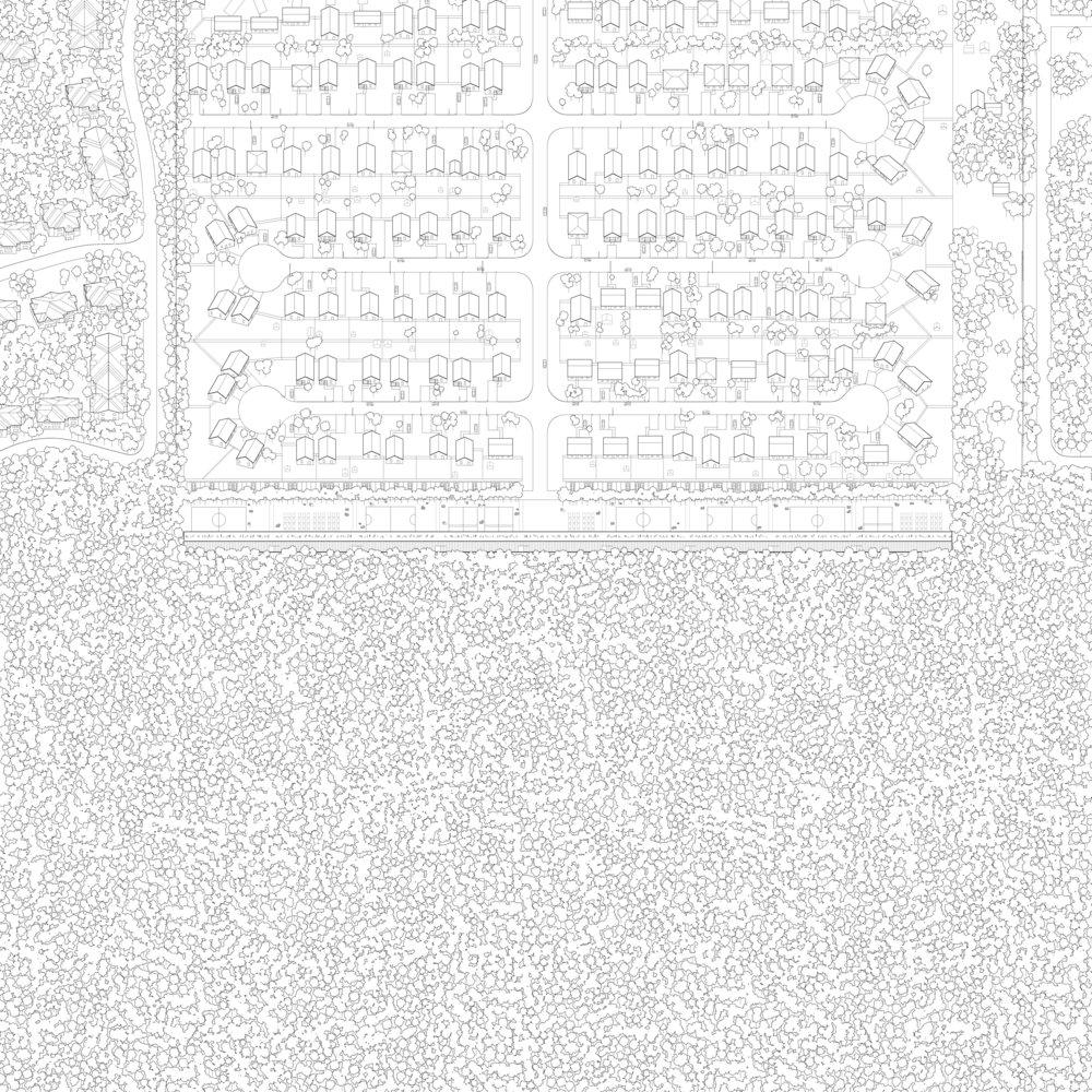 EDGE-AXON (2).jpg