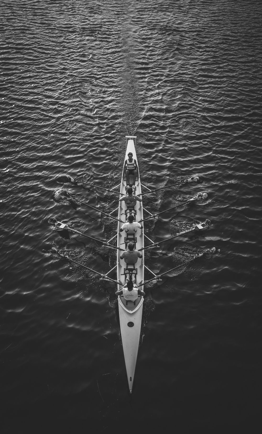 Unisus_International_School_Rowing_02.jpg