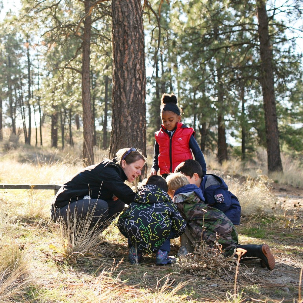 LEARNING FROM NATURE AND THE ENVIRONMENT - Our nature-based program, Saplings, allows for exploring and experiencing the natural world.We encourage imaginative play, creativity, coordination, as well as nurturing problem solving and critical thinking skills.